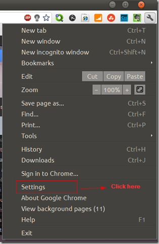 Google Chrome Options and Settings